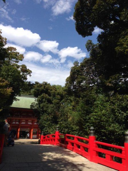 hikawa-shirine-wedding